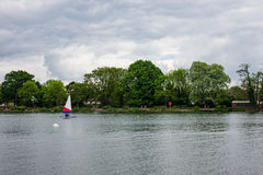 People practice sailing on a Spring day in South Norwood lake Royalty Free Stock Photography