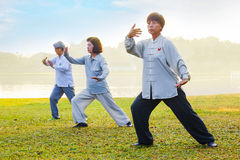 People practice Tai Chi Chuan in a park. BANGKOK, THAILAND - FEBRUARY 13, 2016: Unidentified group of people practice Tai Chi Chuan in a park Stock Images