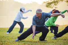 People practice Tai Chi Chuan in a park. BANGKOK, THAILAND - FEBRUARY 13, 2016: Unidentified group of people practice Tai Chi Chuan in a park Royalty Free Stock Image
