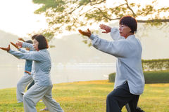 People practice Tai Chi Chuan in a park. BANGKOK, THAILAND - FEBRUARY 13, 2016: Unidentified group of people practice Tai Chi Chuan in a park Stock Image