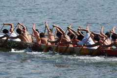 People Practicing Rowing Royalty Free Stock Photography