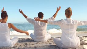 People practicing yoga on the beach stock video footage