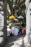 People praying at Tirta Empul holy water temple Bali ,Indonesia. Stock Photography