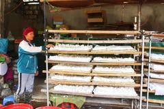 People processing Kudzu flour Royalty Free Stock Image