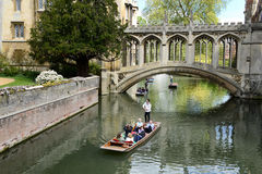 People punting on the Cam River, Cambridge, UK Royalty Free Stock Images