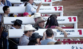 People at the races, Calgary Stock Photo