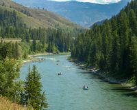 Mountain river filled with many people river rafting. royalty free stock image