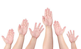 People raise their hand to volunteer. On white background Royalty Free Stock Photos