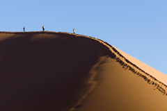People on a red dune in the Namib Desert, in Sossusvlei, Namibia Stock Photography