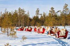 People at Reindeer sleigh caravan in winter forest in Rovaniemi. Lapland, Finland Royalty Free Stock Photos
