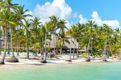People relax on the beach among palm trees stock photography