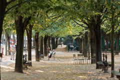 People relax in Luxembourg Gardens in Paris, Royalty Free Stock Photo