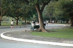 People Relax and Playing Sport in the Park Stock Photo