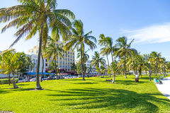 People relaxing at beautiful Miami Beach Stock Images