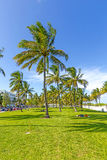 People relaxing at beautiful Miami Beach Royalty Free Stock Photos