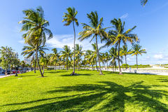 People relaxing at beautiful Miami Beach Stock Photo