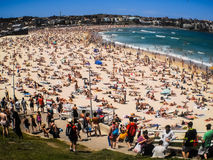 People relaxing at Bondi beach Royalty Free Stock Photography