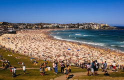 People relaxing at Bondi beach Stock Photos
