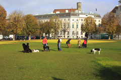 People are relaxing in public city park Royalty Free Stock Image