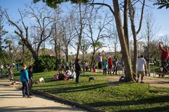 People resting in Parc de la Ciutadella, on March 03, 2013 in Barcelona, Spain Stock Photos