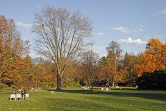 People are resting in the park outdoor royalty free stock images