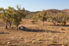 People are resting in shade of a tree. Flinders Ranges. South Australia. stock photos