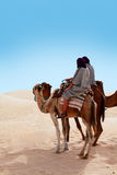 People ridding by camel Royalty Free Stock Photography