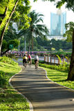 People ride  on the bicycle lane. People ride bicycle on the bicycle lane in the park for morning exercise Stock Photography