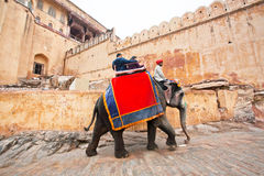 People ride the big elephant for trip to the historical indian Fort Royalty Free Stock Photos