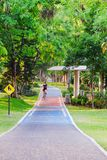 People ride bike in Bicycle path in Public Park Royalty Free Stock Image