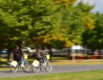 people-riding-bicycles-in-the-park Royalty Free Stock Image
