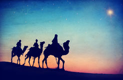 People Riding Camel Isolated on Background Royalty Free Stock Photography