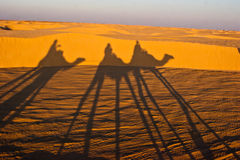 People riding a camel Royalty Free Stock Photo