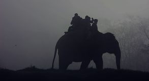 People riding an elephant in fog