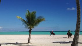 People riding horses on a beach