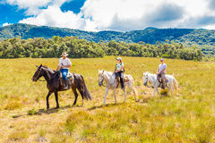 People riding horses in a beautiful scenery Royalty Free Stock Photos