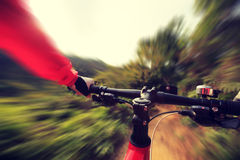People riding mountain bike. On forest trail Stock Images