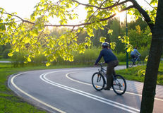 People riding their bicycles. In the park Stock Photo