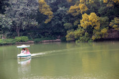 People are rowing in the park at weekends Royalty Free Stock Images