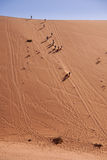 People Running Down a Dune in Namib Desert, Namibia Royalty Free Stock Photos