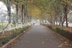 People running for fun in shenshan garden wuhu, anhui Royalty Free Stock Photography