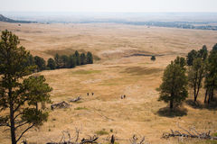 People Running in the Grass at Fort Robinson State Park, Nebraska. People Running in the grass near Pine Ridge, Fort Robinson State Park, Nebraska Royalty Free Stock Photos