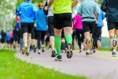 People running in park. Marathon. Healthy lifestyle Stock Photography