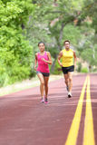 People running on road - Sport and fitness runners. People running on road. Sport and fitness runners women and men training for marathon run doing high Stock Image