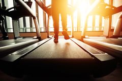 People running on the running machine in the gym. royalty free stock images