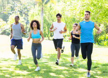 People running together in park. Group of people running together for fitness in the park royalty free stock photography