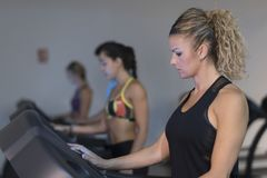 Group of people training running treadmill in gym Royalty Free Stock Photo