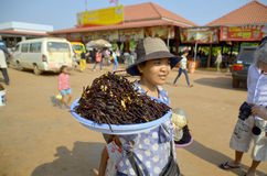People sale fried bugs, Royalty Free Stock Photo