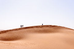 People on sand dunes, Draa valley (Morocco) Royalty Free Stock Photography