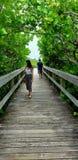 People on Scenic boardwalk. Coastal walk through the trees in Florida people scenic boardwalk stock image